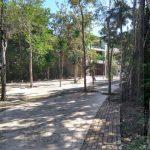 Rent of commercial premises in excellent location of Aldea Zama – Tulum