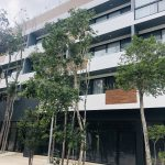 Local premises for rent in the commercial area of Aldea Zamá